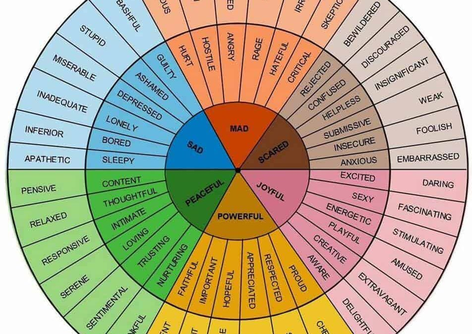 AFT & Feelings Wheel